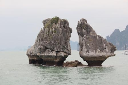 Reis Vietnam